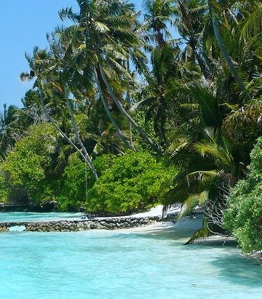 Locations to Visit in The Maldives